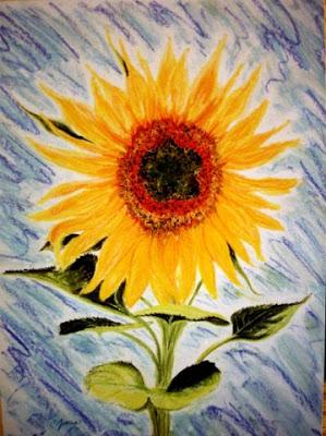 grammas-sunflower